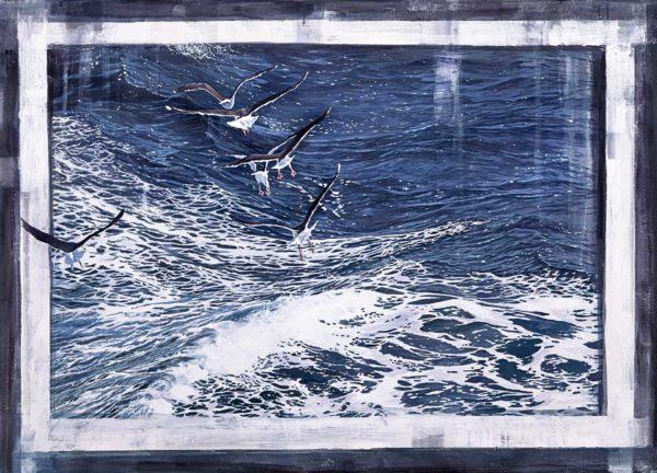 Seagulls by Niklas Amundson